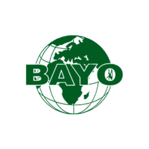 12) Bayo